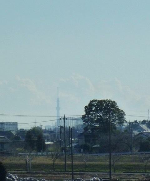 skytree0102