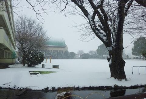 さぎのもり小学校雪景色