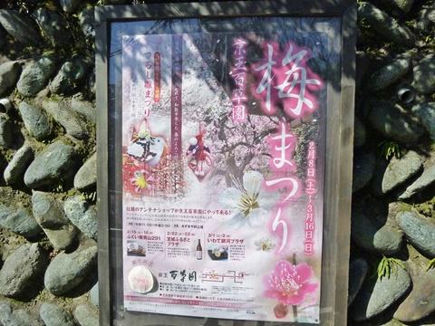 梅まつりポスター