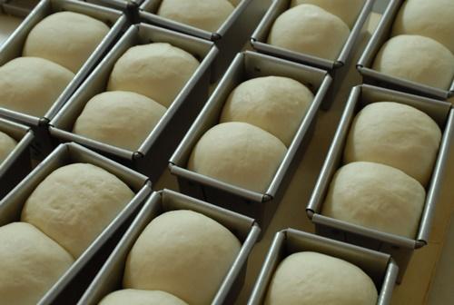 ミニ食パン発酵