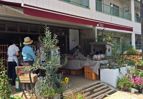 3552食堂自然栽培野菜マルシェ