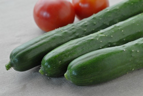 自然栽培キュウリとトマト