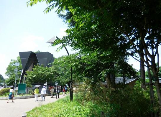 緑の上野公園