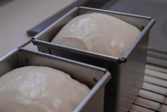 湯種食パン発酵できた