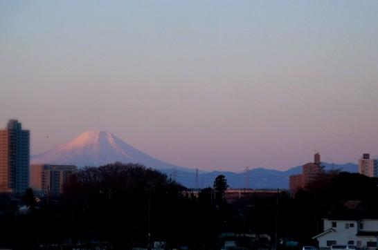 初日に映える富士山