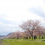 坂戸写真散歩