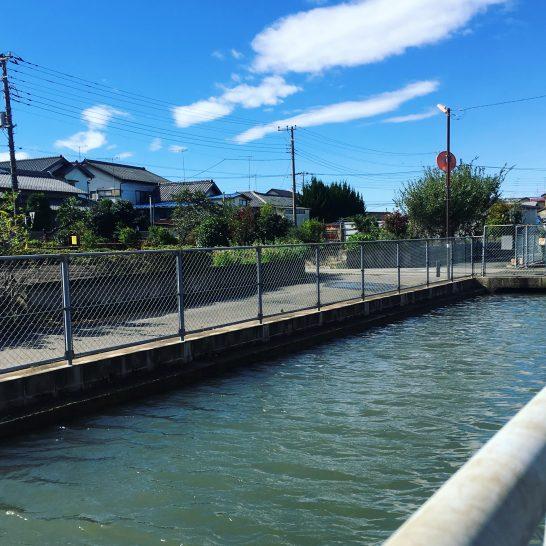 午後から晴れた江川沿い