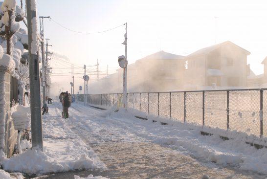 江川沿い雪景色