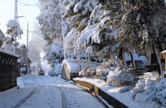 八幡神社の雪