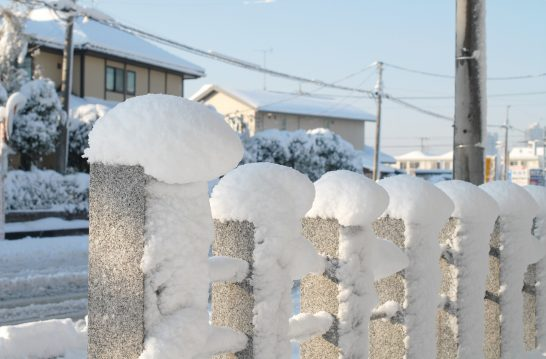 石の杭に雪